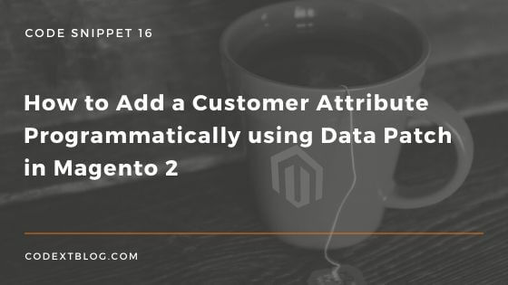 add_customer_attribute_programmatically_data_patch_magento_2_new